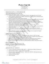 Top   auto insurance agent resume samples Brefash Health Insurance Agent Resume
