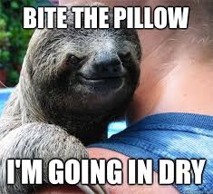 Bite the pillow I'm going in dry - Suspiciously Evil Sloth - quickmeme via Relatably.com
