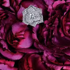 Piaget <b>Rose</b> - Piaget Luxury <b>Jewelry</b> Online