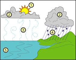 reading comprehension   the water cyclea water cycle diagram