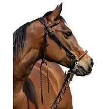Barefoot Amber <b>Bridle 2</b> in 1 | <b>Horses</b>, <b>Horse bridle</b>, Bitless <b>bridle</b>