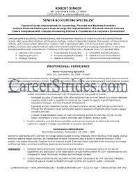 Sample Resume  Professional Resume Writing Boston Ma Chameleon  Mr  Resume