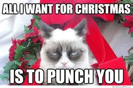 Memes Vault Merry Christmas Memes of Dog via Relatably.com