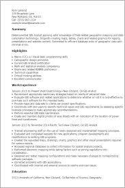 program analyst resume examples  management analyst resume    program analyst resume raenak have you forgotten how good resume