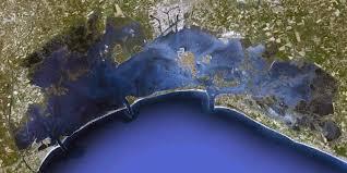 Risultati immagini per venezia laguna