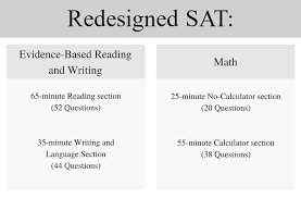 does history repeat itself sat essay format   essay for you  does history repeat itself sat essay format   image