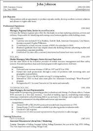 Professional Resume Sample Free   http   jobresumesample com     professional