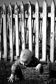 fences essay topics fences essay topics gxart fences essay fences essay topics gxart orgphoto fences essay topics images