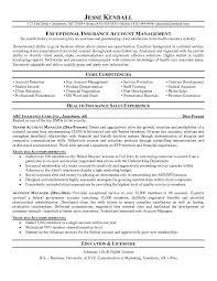 resume examples  sample resume for insurance agent  sample resume        resume examples  sample resume for insurance agent with account manager experience  sample resume for