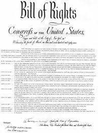 bill of right essay  pdfthe bill of rights as a constitution  bill of right essay