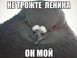 Там, где патриоты снесли истуканы Ленина, проблем с терроризмом не возникает, - Тягнибок - Цензор.НЕТ 5656