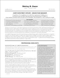 Award-Winning Executive Resume Examples Chief Investment Officer / Senior Fund Manager - Investment Banking Resume. Senior Manager Resume Example