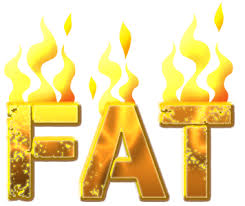 Image result for burn more fat