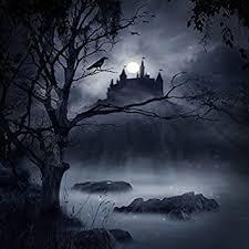 Amazon.com : <b>Laeacco</b> Haunted <b>Castle</b> Backdrop 6x6ft Vinyl ...