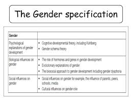 gender social influences on gender role a the gender specification
