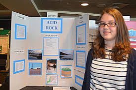pgh regional science tech fair winners julia zenkevich acid rock