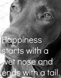 Με τι αρχίζει η ευτυχία;