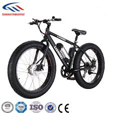 China <b>48V500W</b> Rrea Drive Fat <b>Bike Electrical</b> 26inch (LMTDF-27L ...