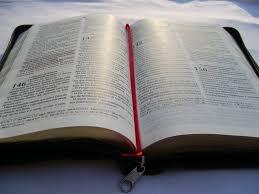 Resultado de imagem para foto buscadores biblico