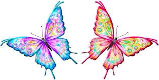 Risultati immagini per farfalla gif