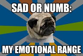 SAD or numb: my emotional range - Clinically Depressed Pug - quickmeme via Relatably.com