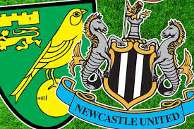 Image result for norwich v newcastle  logo