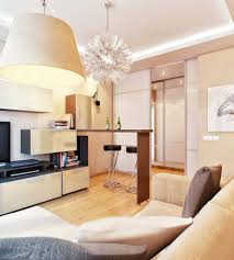 Small Kitchen Living Room Top Impressive Living Room As Kitchen Design Inspirations Home