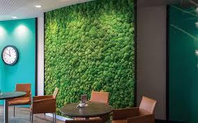 Стабилизированный мох для декора интерьера