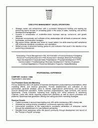 marketing assistant resume sample management resume examples marketing assistant resume sample marketing resume skills strategic executive ceo marketing resume skills