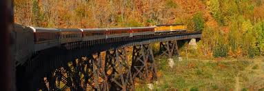 Image result for agawa train