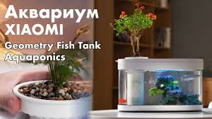 Акваферма - <b>Xiaomi</b> Geometry <b>Fish</b> Tank - YouTube
