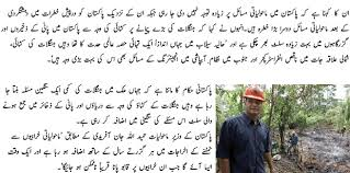 essay on environment wikipedia  imperialdesignstudio essay on pollution in urdu language