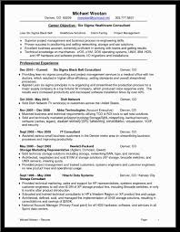 resume for senior level management service resume resume for senior level management resume tips for an executive resume the muse business consultant and