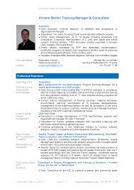 it curriculum vitae   cv resume template examplescurriculum vitae for it   resume cv template examples
