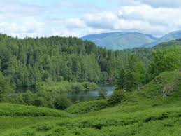 latest news from clair payne page  a lovely view over tarn hows early in the morning