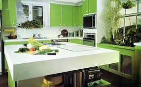 Lemon And Lime Kitchen Decor Lemon Themed Kitchen Design With Wooden Cupboard With Lemon Door