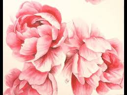 Watercolor <b>Peonies</b> - Hot Pressed 300lb - Painting Demonstration ...