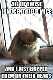 Ashamed Bunny | WeKnowMemes via Relatably.com