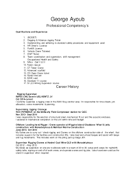 resume georgeayoub   george ayoub professional competency    s qualifications and experience    bosiet
