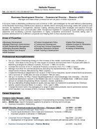 International Business Resume Sample | Get Free Resume Templates International Business Resume Sample