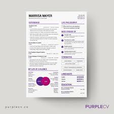 professional resume template resume templates design premium professional resume template