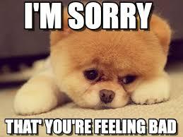 Memes Vault Sad Animal Memes Sorry via Relatably.com
