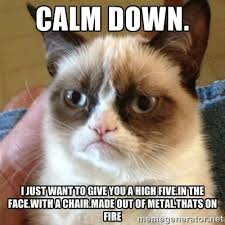 Calm down. I just want to give you a high five.In the face.With a ... via Relatably.com