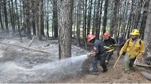 Resultado de imagen para Bomberos Voluntarios de Lago Puelo