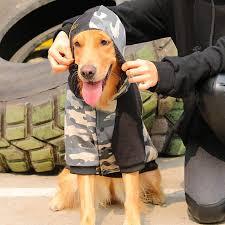 HOOPET <b>Dog Clothing</b> Soft Warm Coat Hoodies for Chihuahua ...