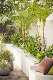 Small Picture 85 best J M planting scheme images on Pinterest Tropical