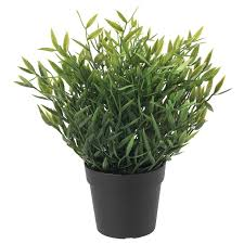 FEJKA <b>Artificial</b> potted <b>plant</b> - in/outdoor <b>House bamboo</b> - IKEA