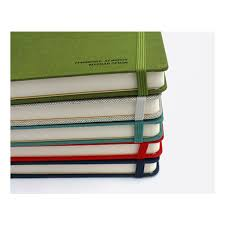 paperian my real story essay undated diary   fallindesign undefined