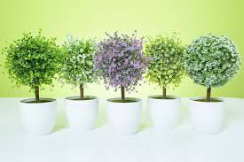 artificial topiary tree amp ball flowers buxus boxwood artificial topiary tree ball plants pot garden