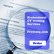 Cv writing services london   Professional CV Writing Services   London
